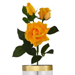 multiflora rose yellow